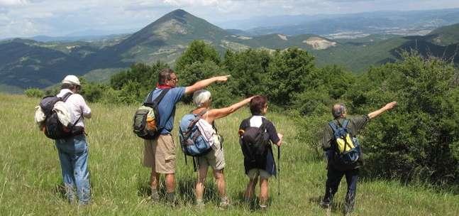Trekking delle ginestre 2014